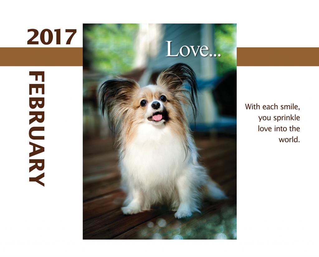 2017-Calendar-Feb-thru-Dec-MandO-no-bleed