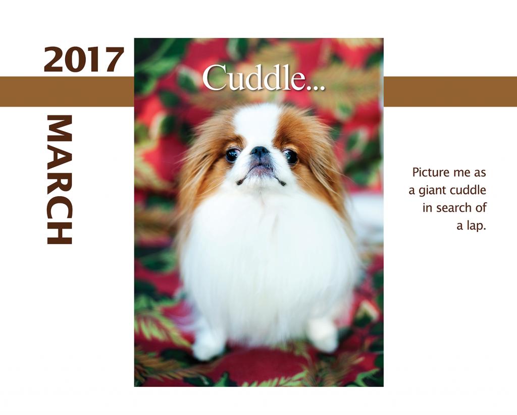 2017-Calendar-Feb-thru-Dec-MandO-no-bleed2