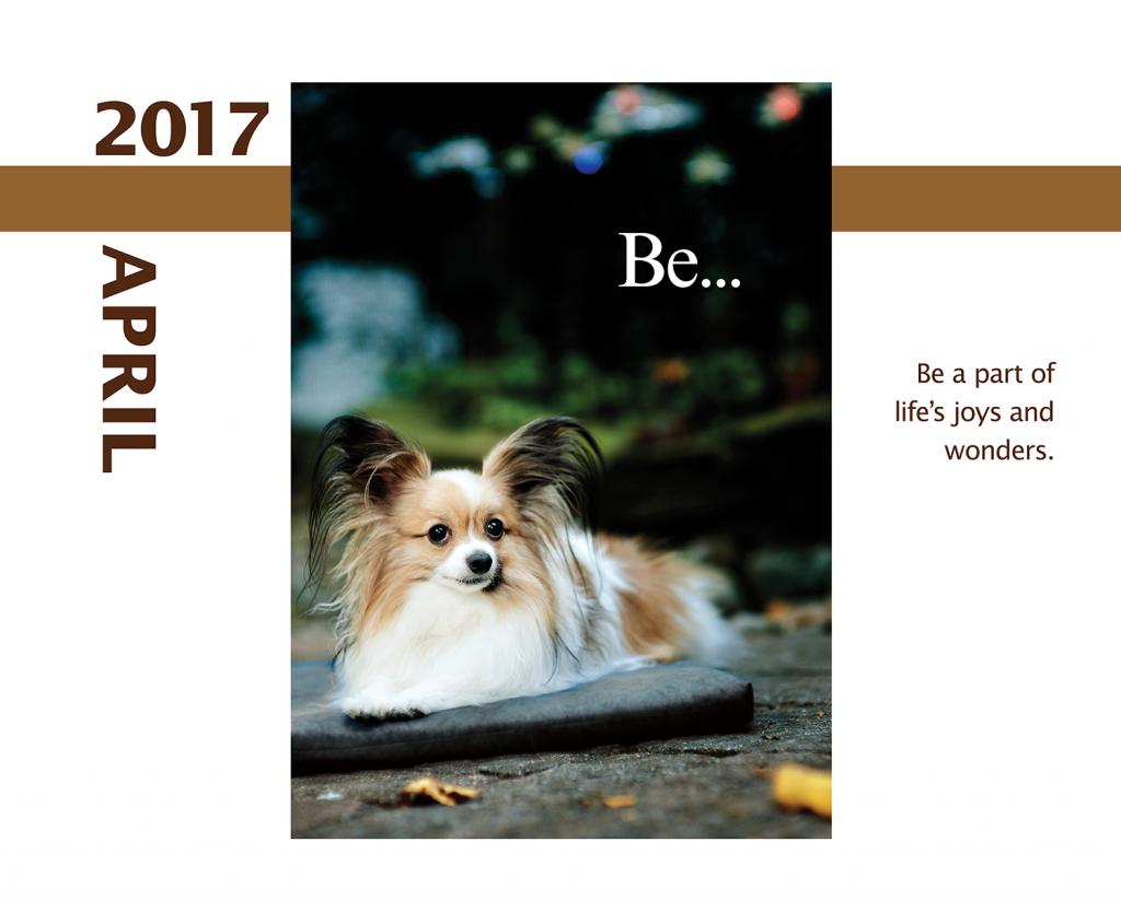 2017-Calendar-Feb-thru-Dec-MandO-no-bleed3