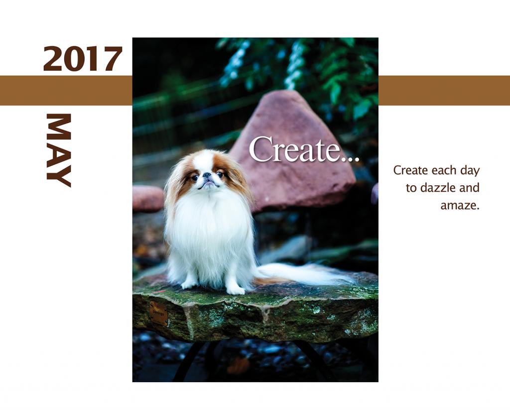 2017-Calendar-Feb-thru-Dec-MandO-no-bleed4