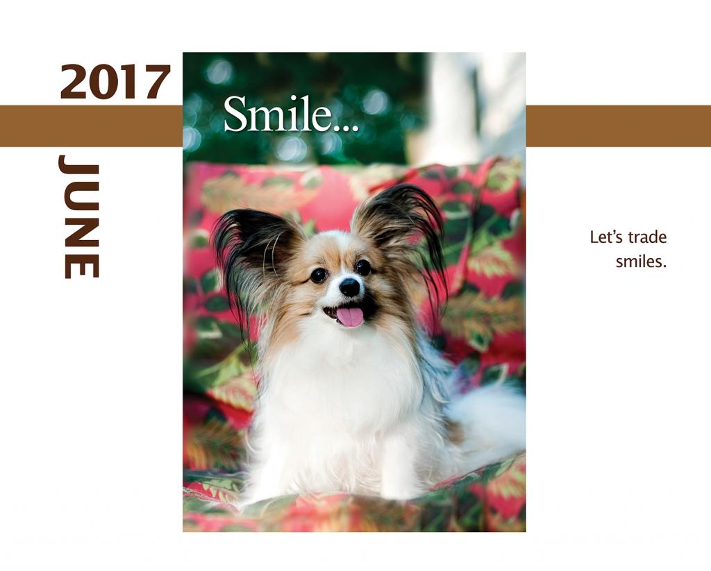 2017-Calendar-Feb-thru-Dec-MandO-no-bleed5