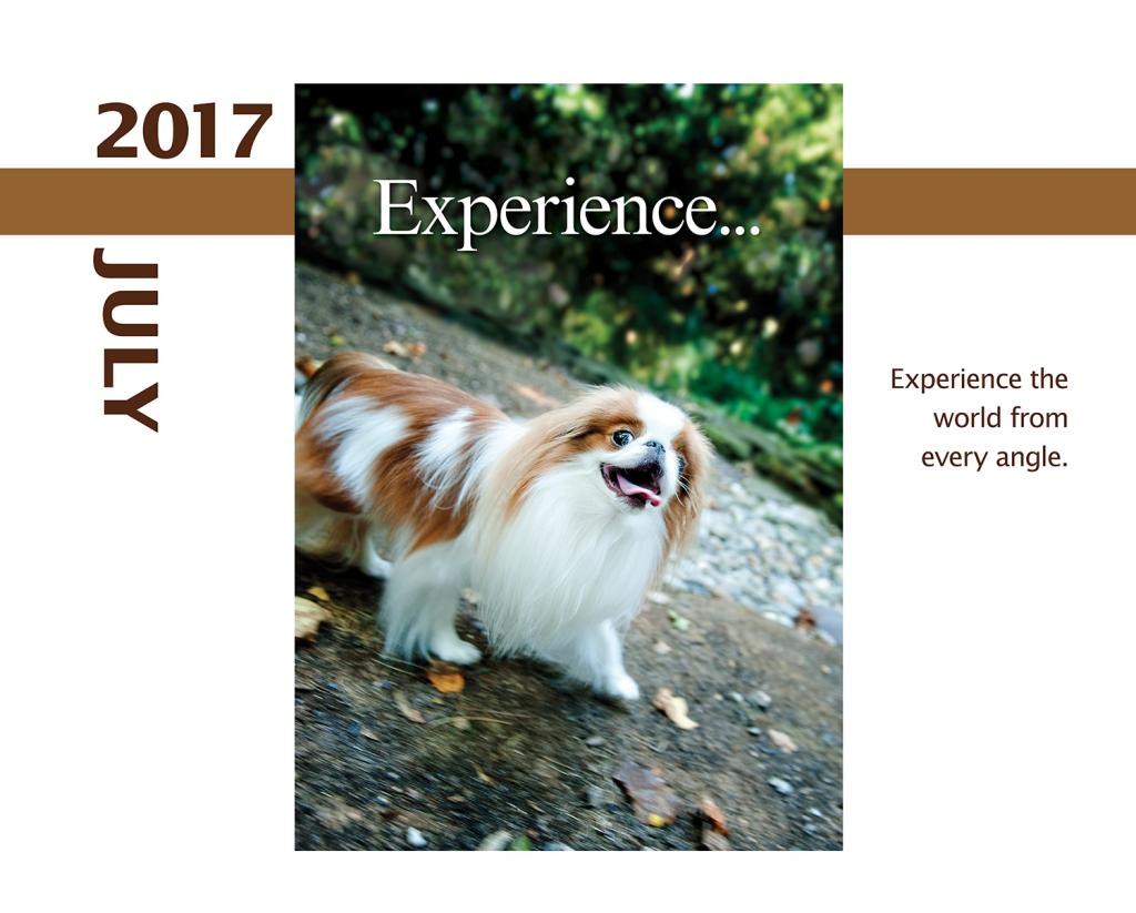 2017-Calendar-Feb-thru-Dec-MandO-no-bleed6