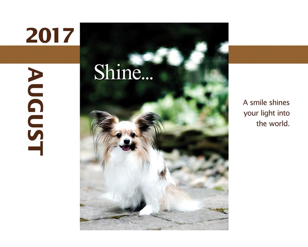 2017-Calendar-Feb-thru-Dec-MandO-no-bleed7