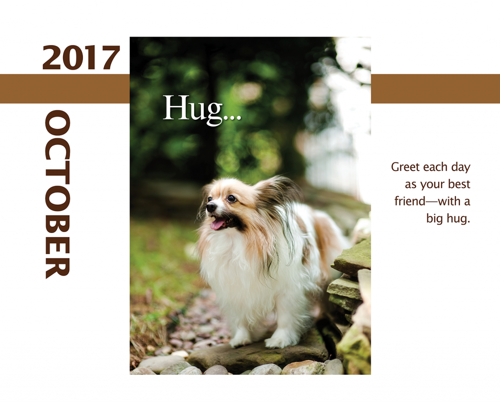 2017-Calendar-Feb-thru-Dec-MandO-no-bleed9