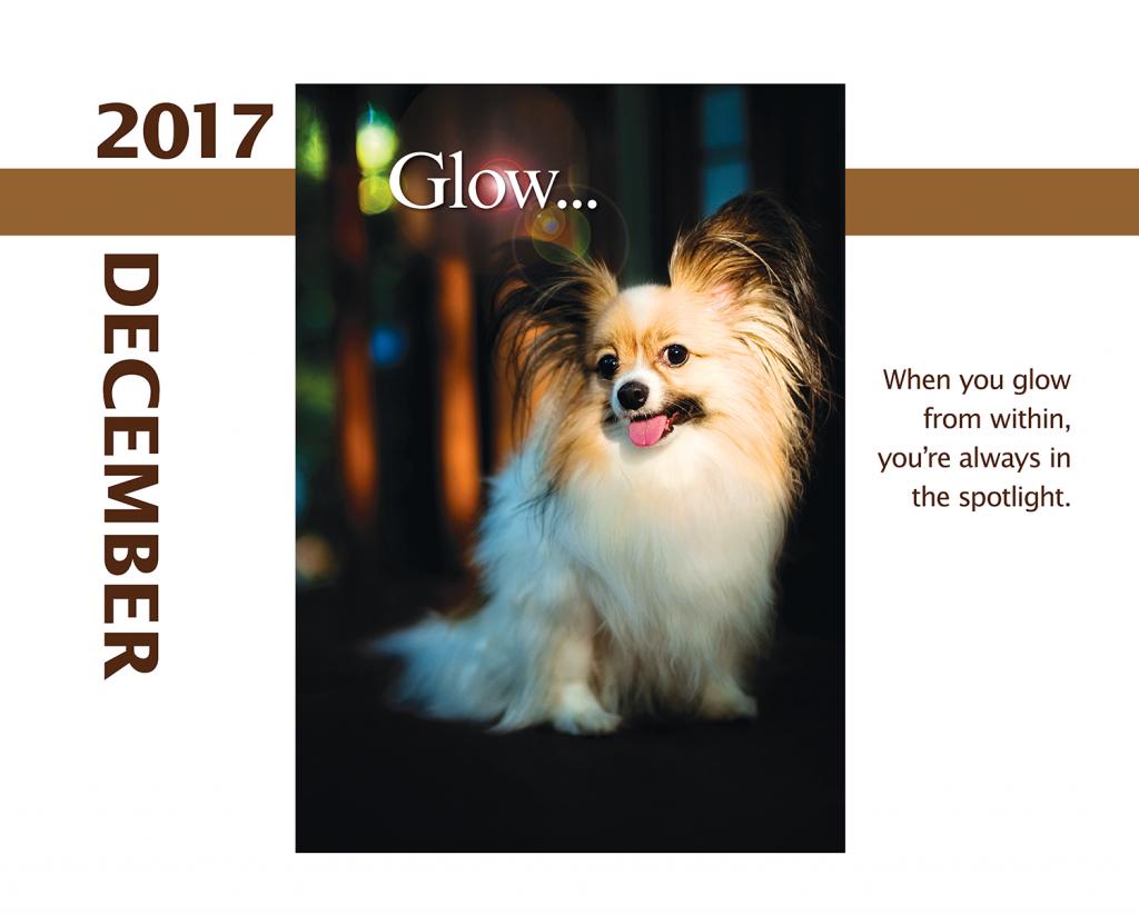 2017-Calendar-Feb-thru-Dec-MandO-no-bleed11