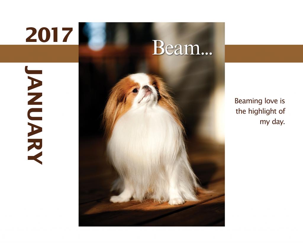 2017-Calendar-January